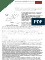 Relazione Sul Colesterolo (Sibilla Ferroni)