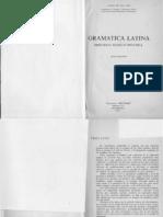 José Guillen - Gramática Latina -histórico, teórico, práctica-graydisplay