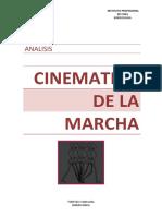 Analisis Cinematico de La MARCHA_BIOMECANICA