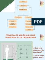 Biomolculas Inorgnicas y Organicas 2011 1ero A