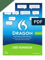 Dragon 11 Workbook