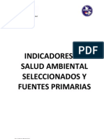 Indicadores de Salud Ambiental Version Al 16 Febrero 2010