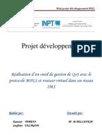 Rapport Projet Dev