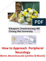 Approach for Peripheral Neurology 31 May 2011