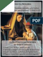Tema e Proposito - Primaria 2011
