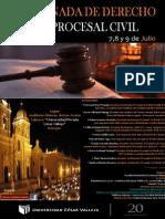Afiche Jornada Procesa Civil Final.