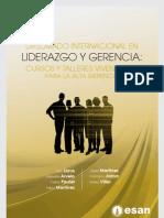 Tríptico Diplomado Internacional en Liderazgo y Gerencia