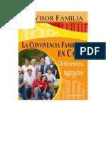 VISOR FAMILIA 2007 CALI / COLOMBIA