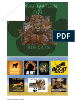 Conservation for Big Cats Project