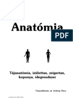 AnatomiaHT2
