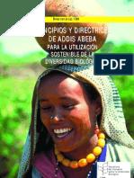 Addis Abeba Utiliz Sostenible