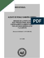 Alegato de Ronald Gamarra