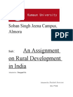 Assignment on Rural Development