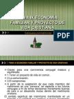 TEMA IX ECONOMÍA FAMILIAR Y PROYECTO DE VIDA