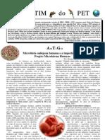 Microbiota humana