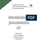 metabolismo C3 (ciclo de Calvin)