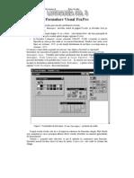 Formulare Visual FoxPro
