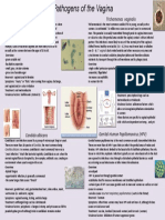 Pathogens of the Vagina-Annie Espinosa-- This is the Revised Version