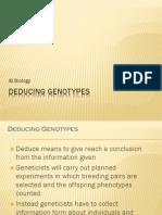Deducing Genotypes