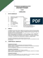 Conversion Silabo a PDF