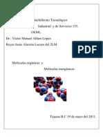 Moleculas Organicas e Inorganicas