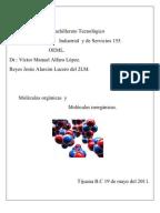 Funciones del sistema inmunologico