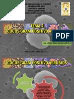 TEMA 4 Enterococcus