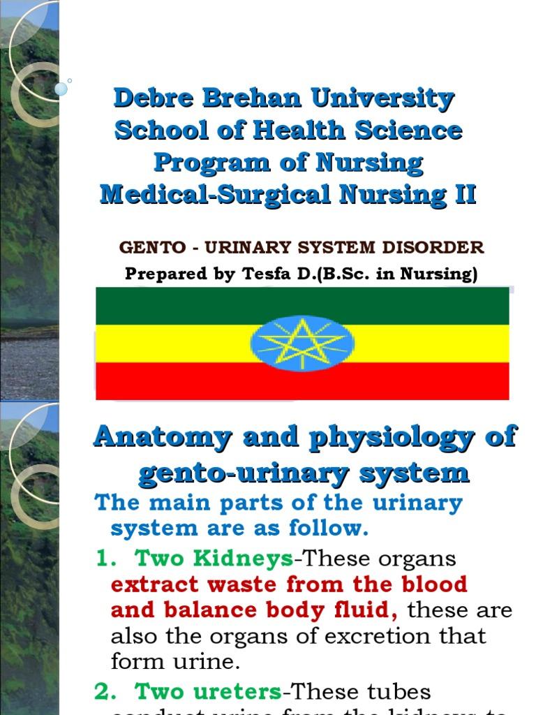 Medical Surgical Nursing:Geniro Urinary Tract Disorder. | Kidney ...