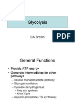 8. Glycolysis
