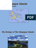 Biodiversity in The Galapagos Islands
