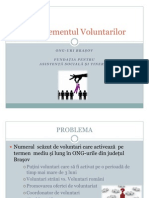 Voluntar de Profesie - Seminar