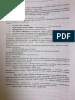Sdr.paraneoplazic (Neurologie)
