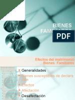 BIENES_FAMILIARES