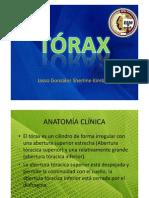 Toráx