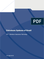 Petroleum Br Overveiw