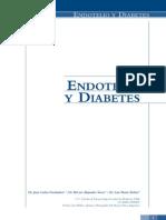 Endoteloydiabetes