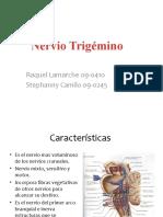 Ppt Trigemino (1)