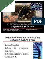 03- Evolución Molecular antes de la VIDA