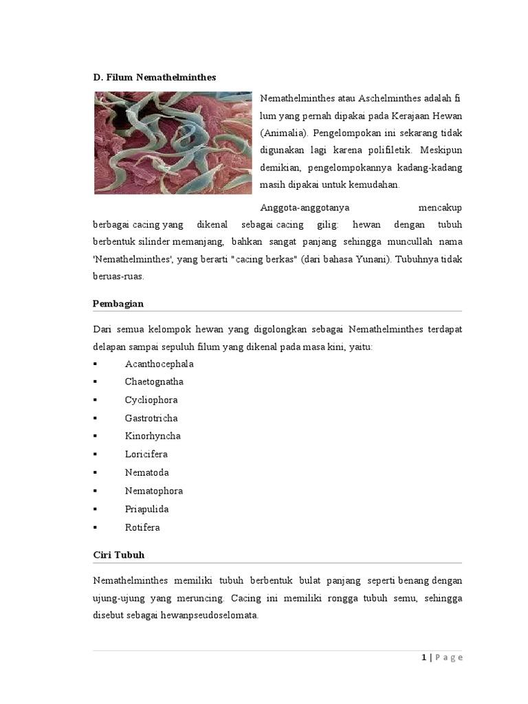 5300 Koleksi Contoh Gambar Hewan Filum Nemathelminthes Gratis