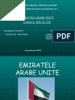 Dubai Proiect