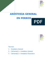 4.- Anestesia General en Perros
