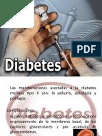expo Diabetes mellitus lic. en enfermería