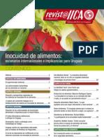 iica-revista4-04
