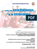 De La Adolescencia La Ciudadania Ver 2010 2012