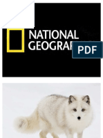 2011 National Geographic Photos