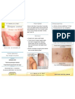 Brochure Herpes Zoster