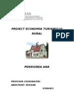 Proiect Economia Turismului Rural Ana