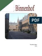CKV verslag 6 Binnenhof
