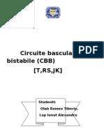 Circuite Basculante Bistabile (CBB) RS,JK,T