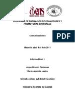Comunicacion 1 PDF
